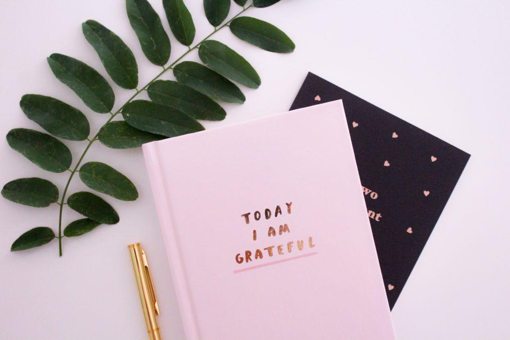 Practicing Gratitude | Energy Field Mastery | Tamara Schenk